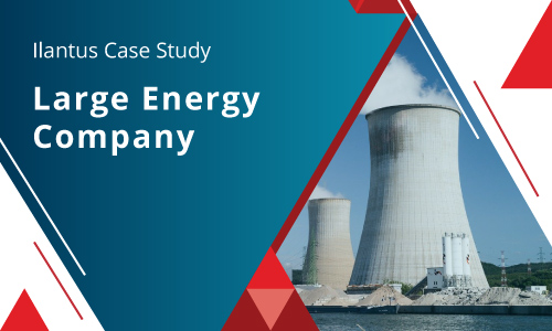 Energy Sector Case Study